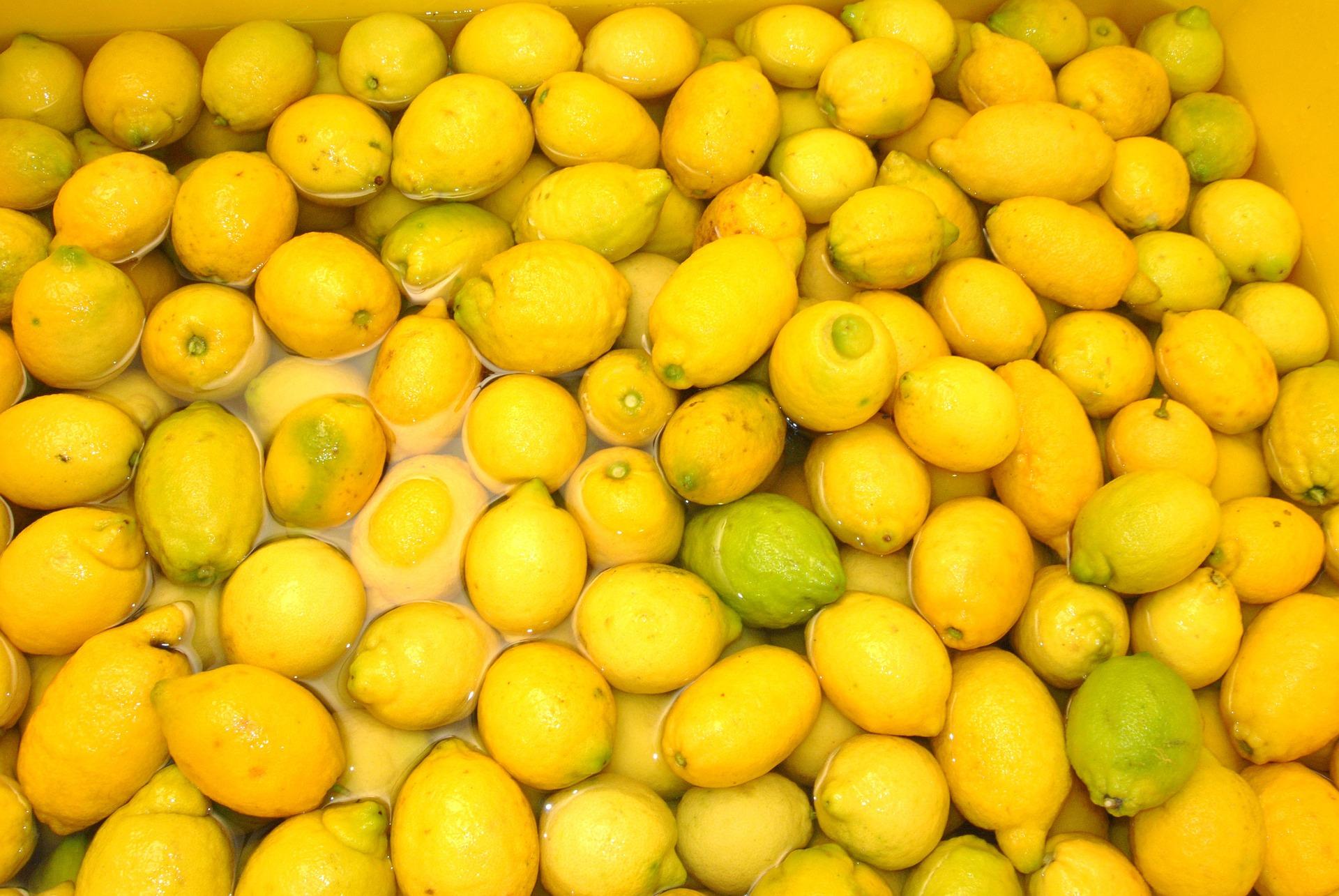 Preparation limoncello