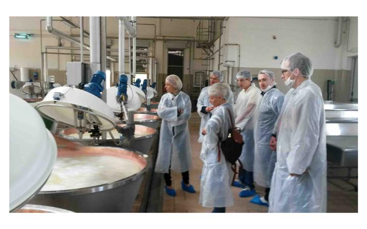 fabrication parmesan