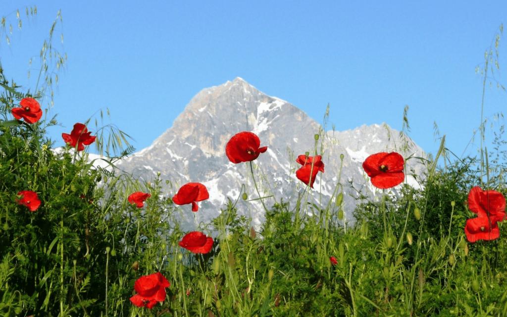 vacances dans les montagnes italiennes