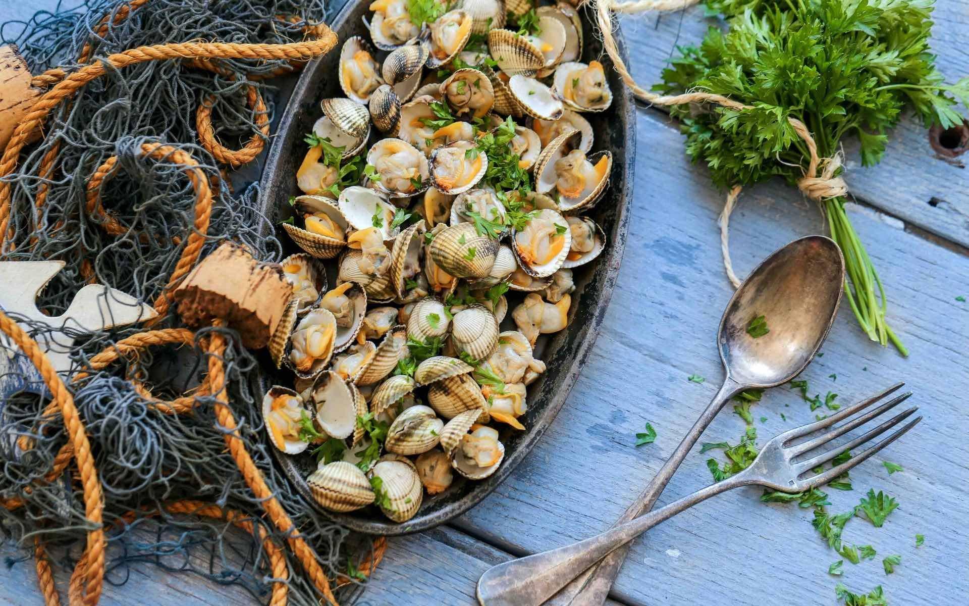 Les coques un classique de la cuisine lagunaire