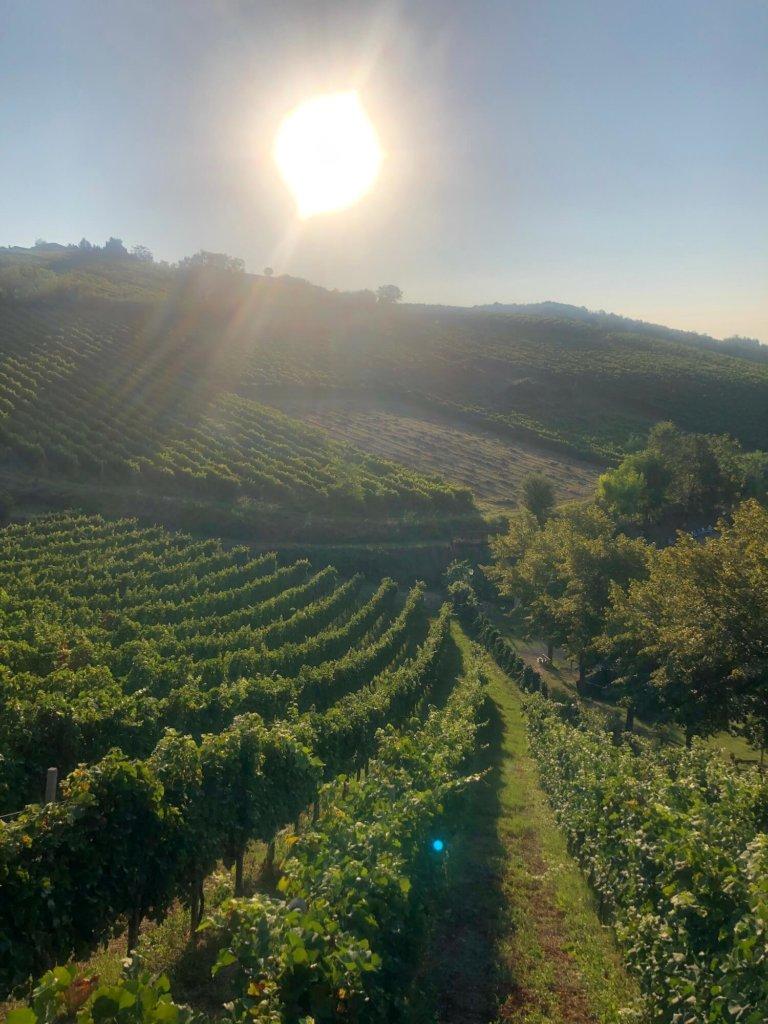 visite italie agritourisme