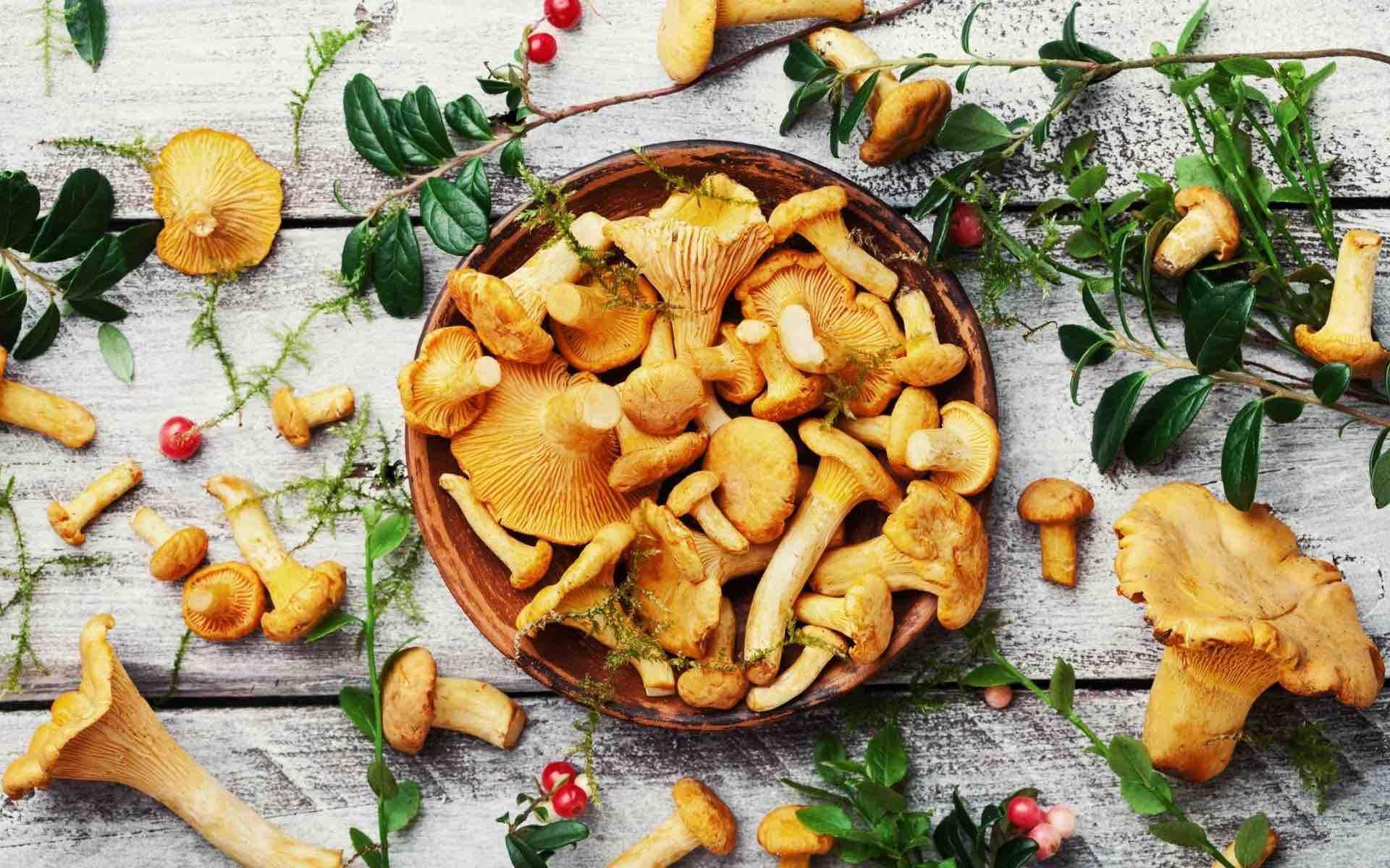 2 recettes italiennes d'automne aux champignons - une